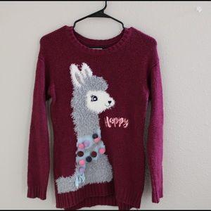 Justice Llama Sweater